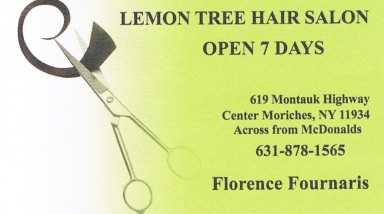Lemon Tree Hair Salon